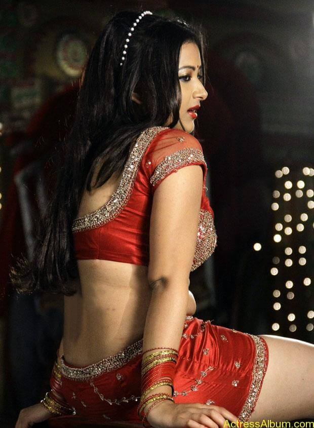 swetha basu-hot-pictures- (2)