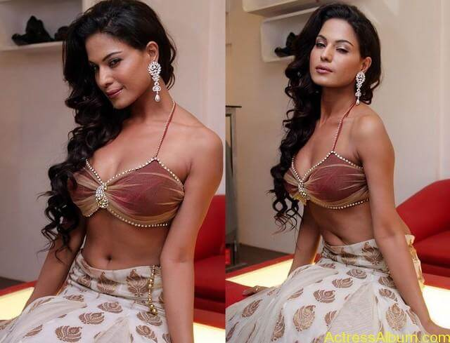 Veena Malik Hot Stills (1)