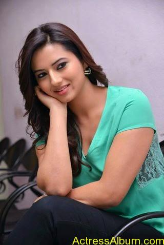 Actress Isha Chawla hot Gallery (8)