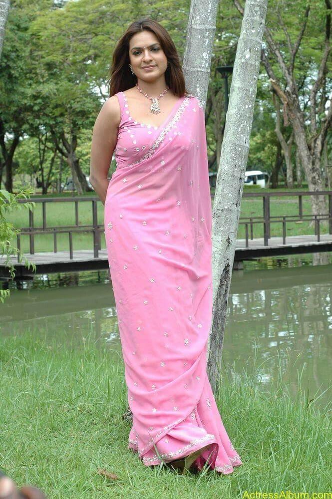 Aditi Agarwal hot stills in pink saree (1)
