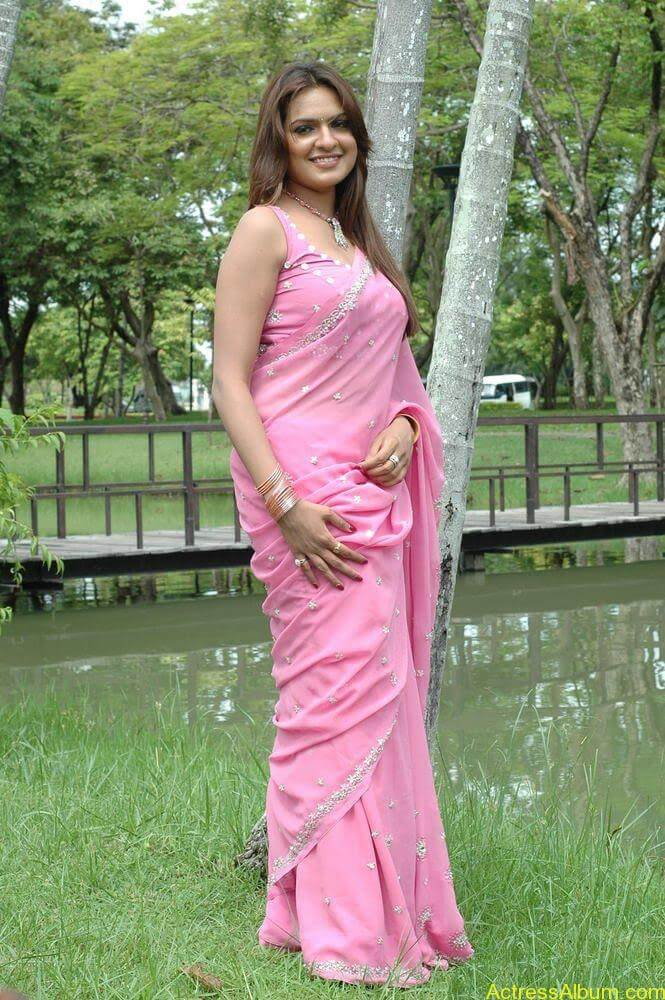 Aditi Agarwal hot stills in pink saree (2)