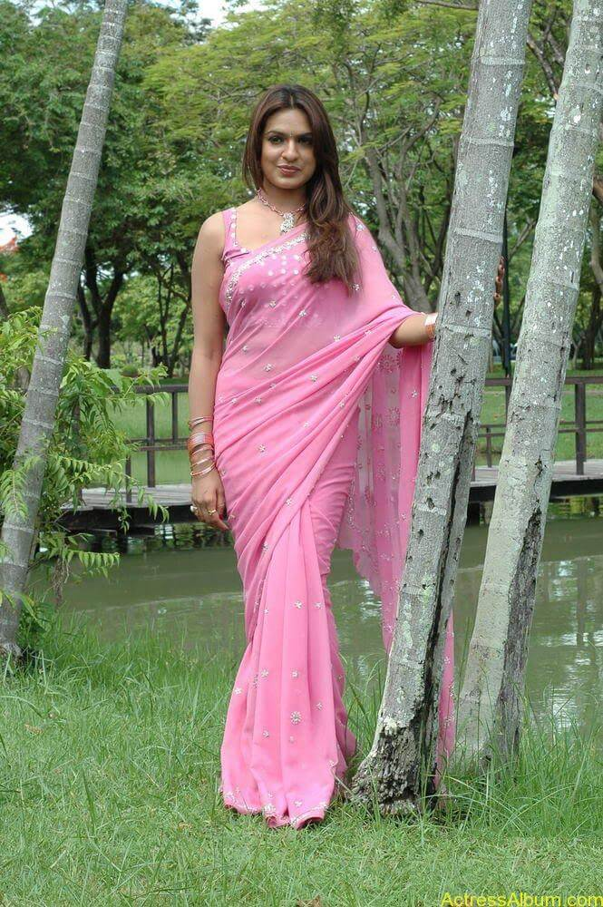 Aditi Agarwal hot stills in pink saree (3)
