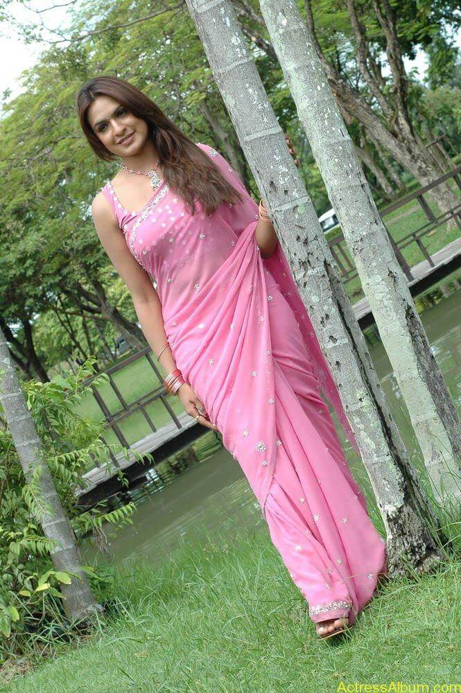 Aditi Agarwal hot stills in pink saree (4)