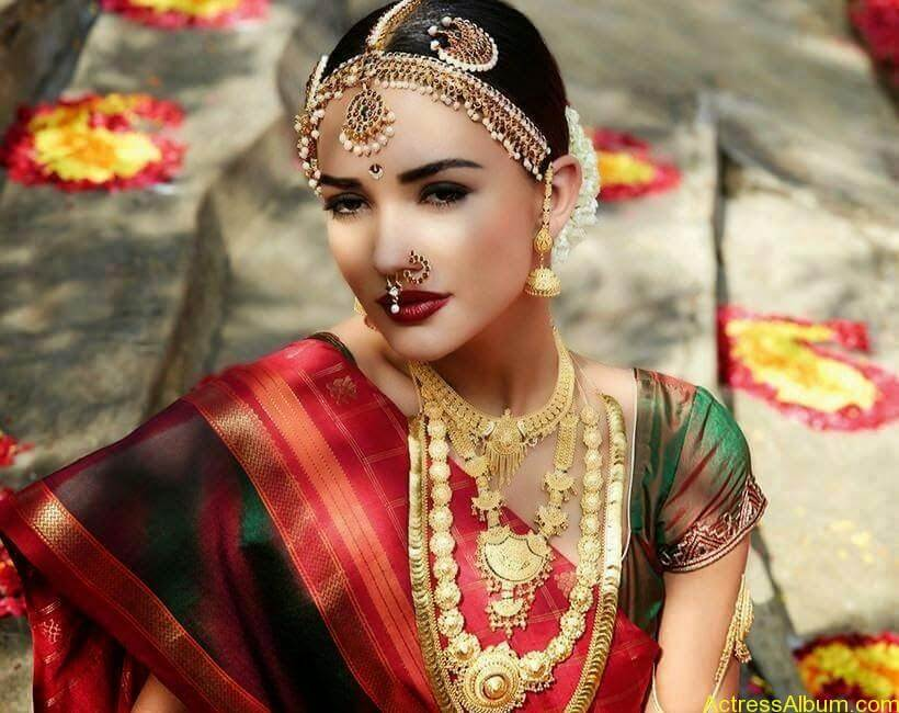Amy Jackson Traditional Looks Gallery 1