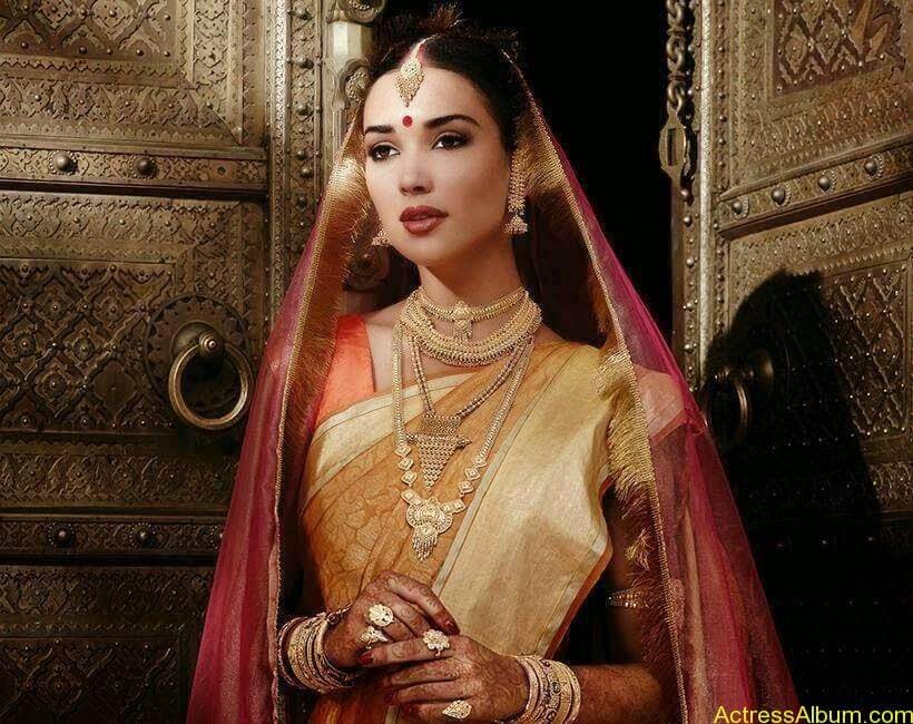Amy Jackson Traditional Looks Gallery 5