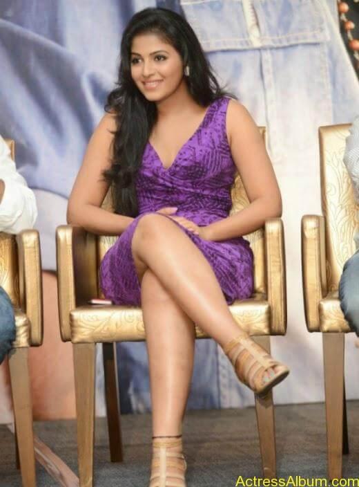 Anjali latest cute hot photos (5)