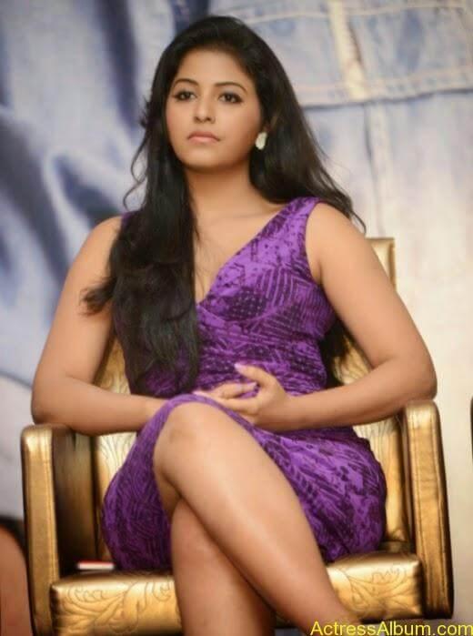 Anjali latest cute hot photos (6)