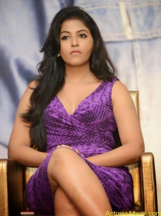 Anjali latest cute hot photos (7)