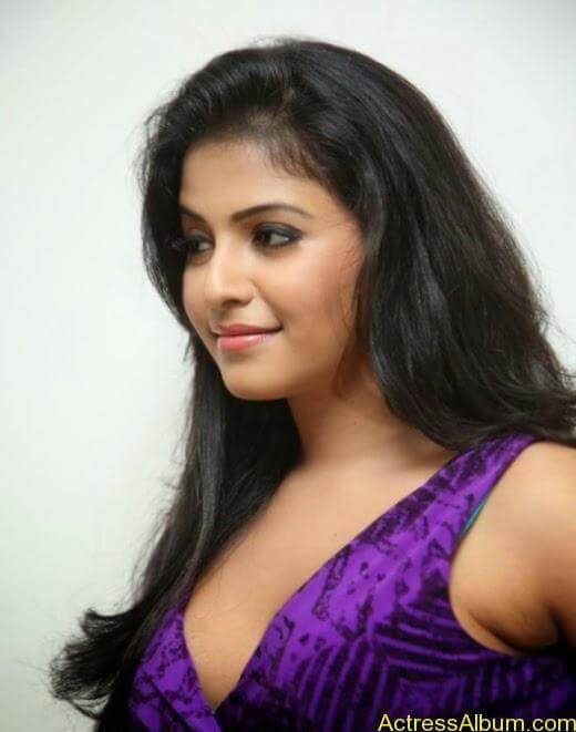 Anjali latest cute hot photos (8)