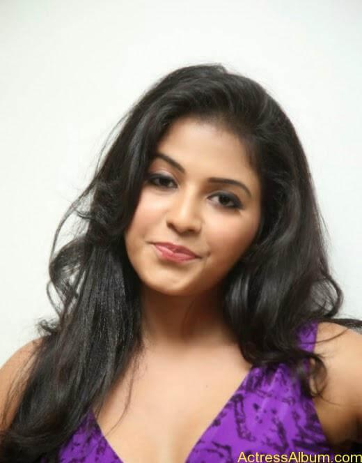 Anjali latest cute hot photos (9)