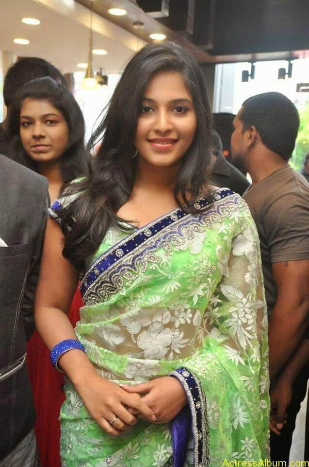 Anjali latest cute hot stills in saree (1)