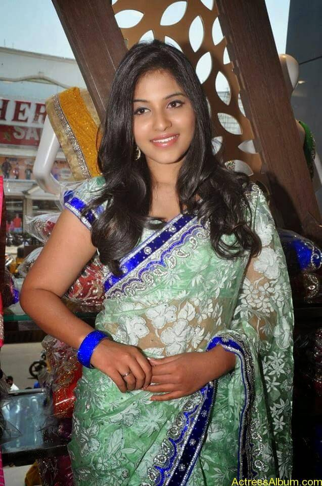 Anjali latest cute hot stills in saree (11)