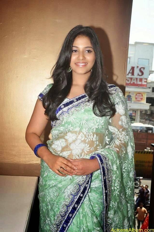 Anjali latest cute hot stills in saree (12)