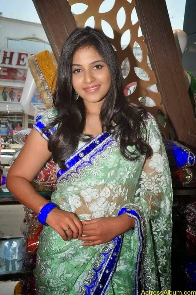 Anjali latest cute hot stills in saree (13)