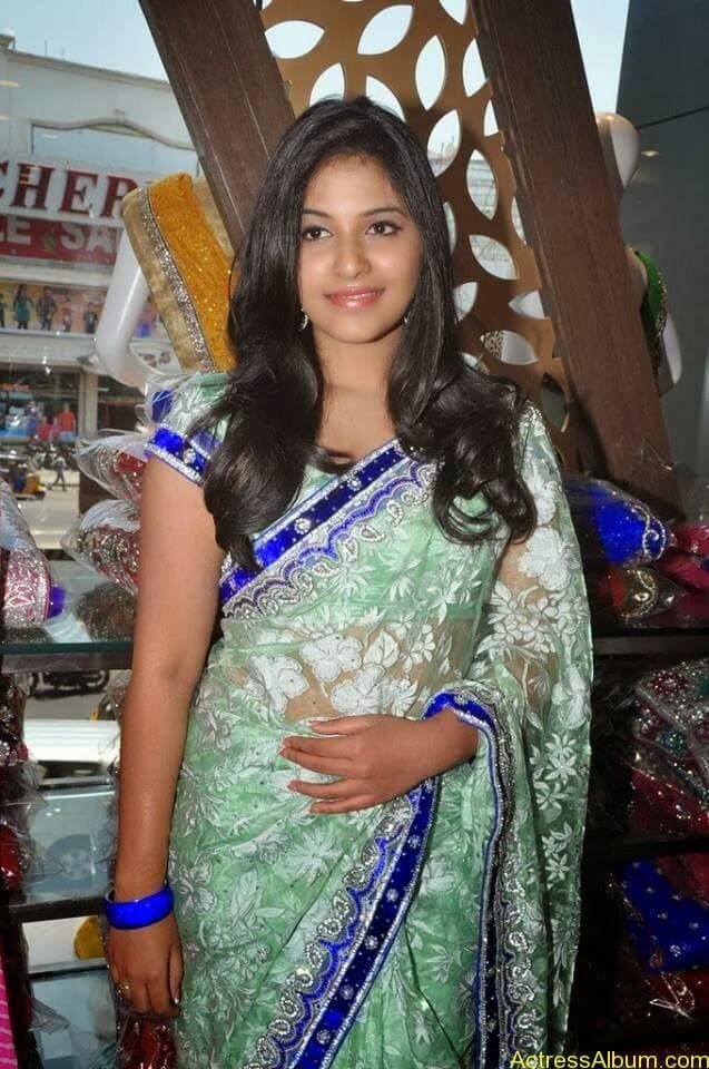 Anjali latest cute hot stills in saree (4)