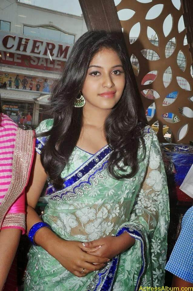 Anjali latest cute hot stills in saree (6)
