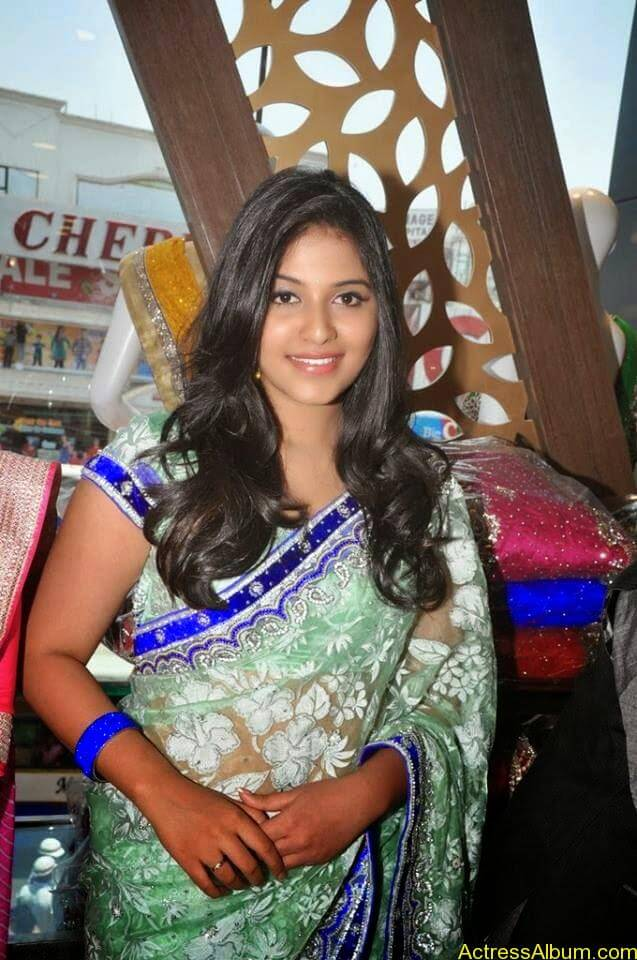 Anjali latest cute hot stills in saree (8)