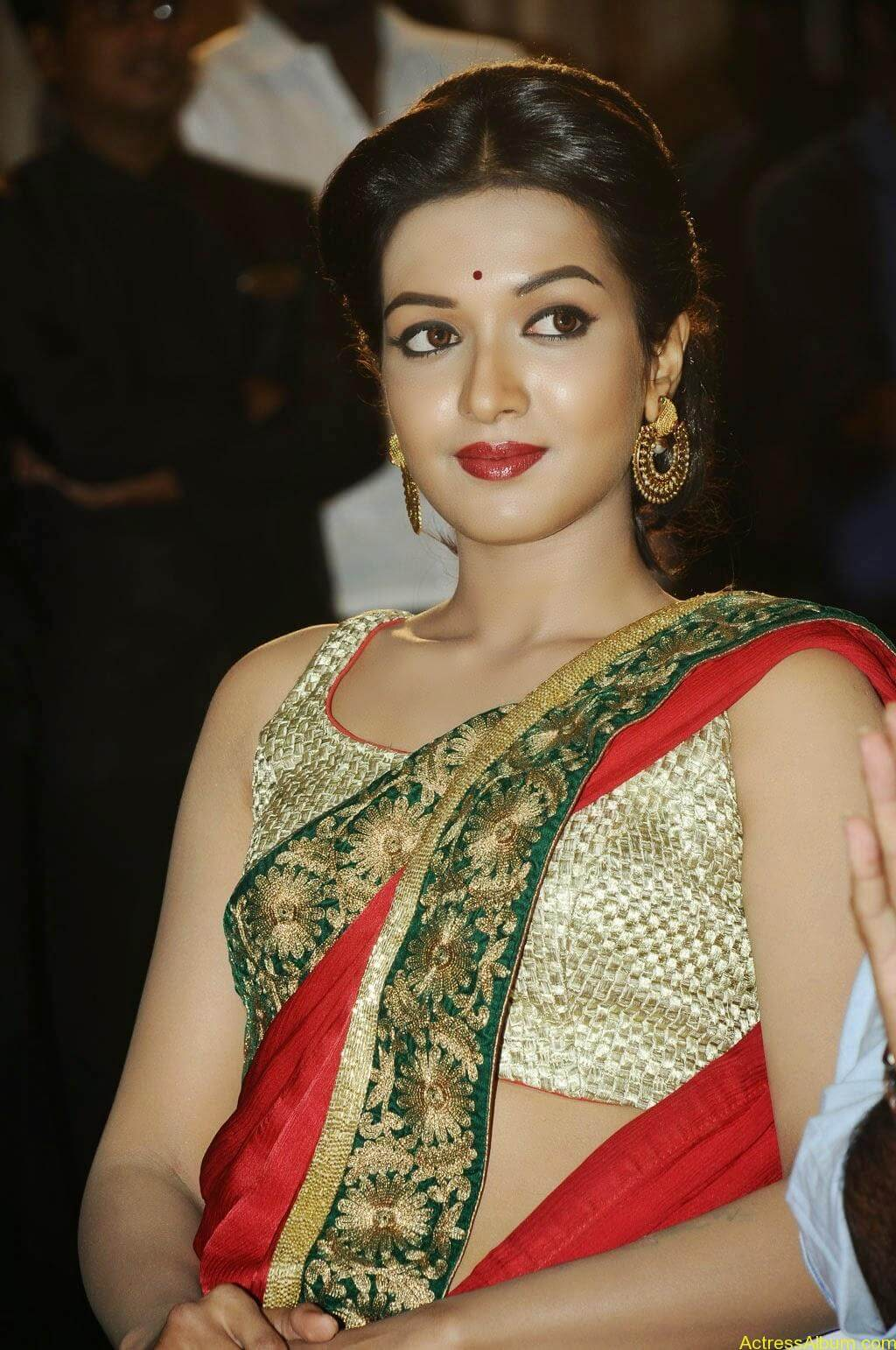 Catherine tresa latest hot stills (1)