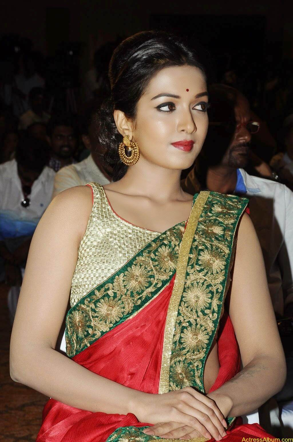 Catherine tresa latest hot stills (4)