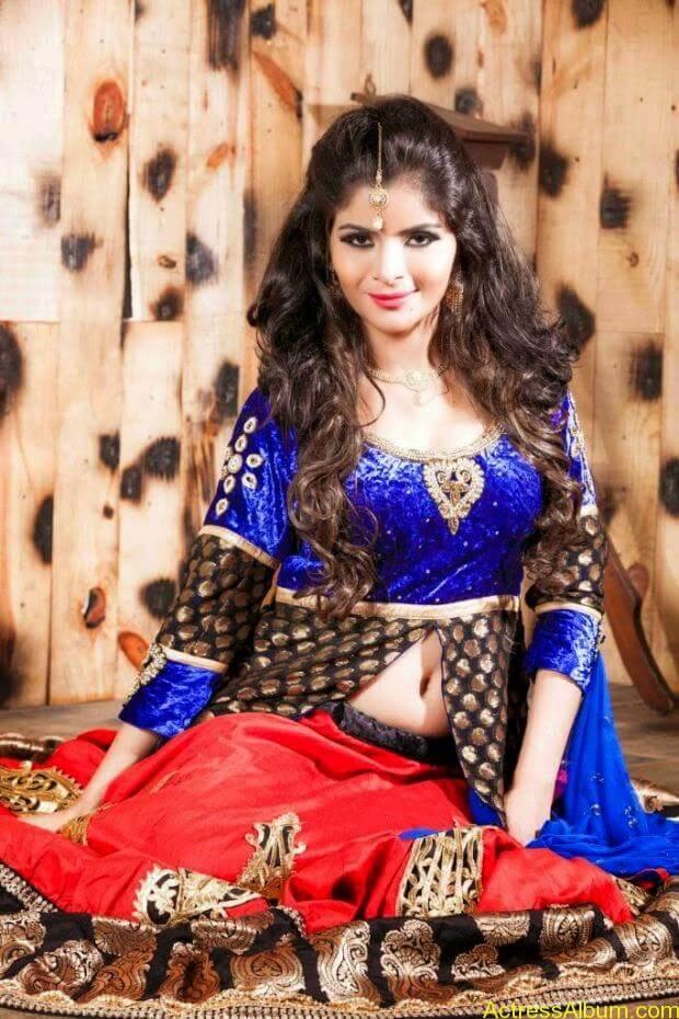 Gehana Vasisth hot photo shoot (3)