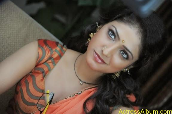 Haripriya hot in saree photos (11)