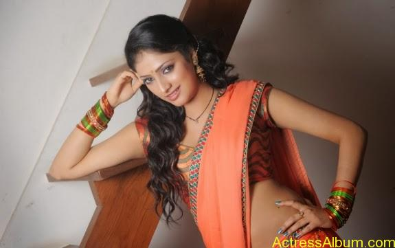 Haripriya hot in saree photos (12)