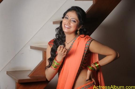 Haripriya hot in saree photos (13)