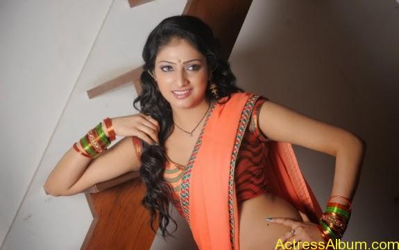 Haripriya hot in saree photos (6)