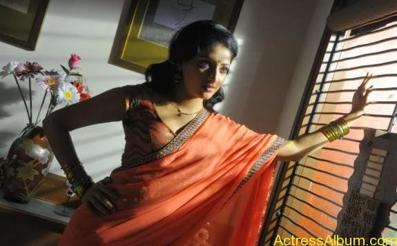 Haripriya hot in saree photos (8)