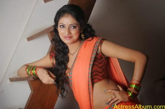 Haripriya hot in saree photos (9)