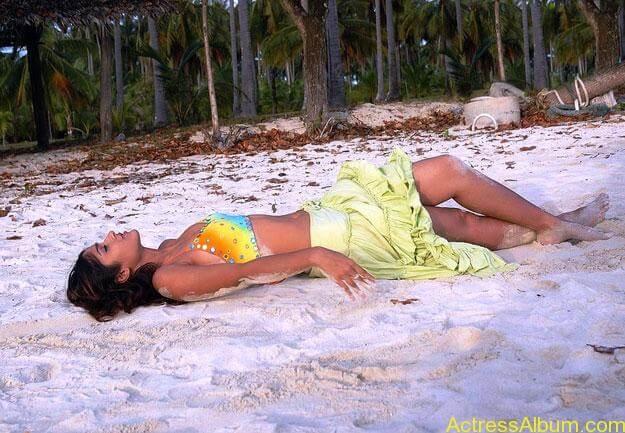hot-beach-babes-420e948f