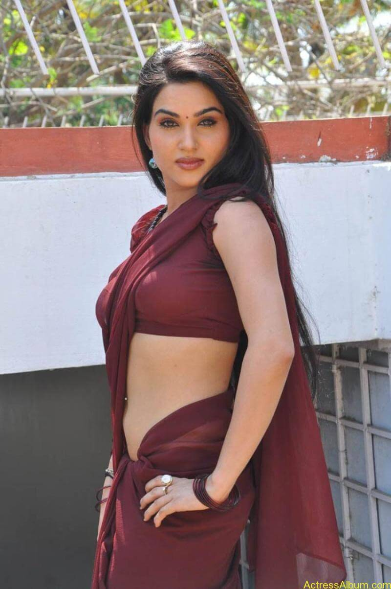 Kavya Singh Hot Saree Stills (15)