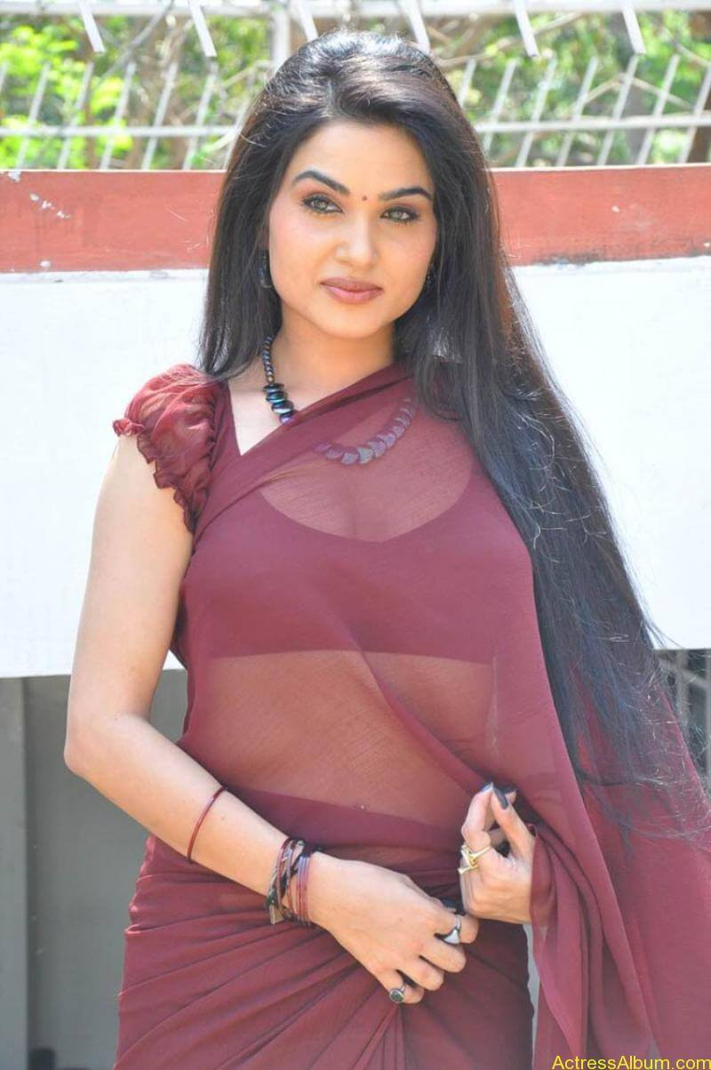 Kavya Singh Hot Saree Stills (16)