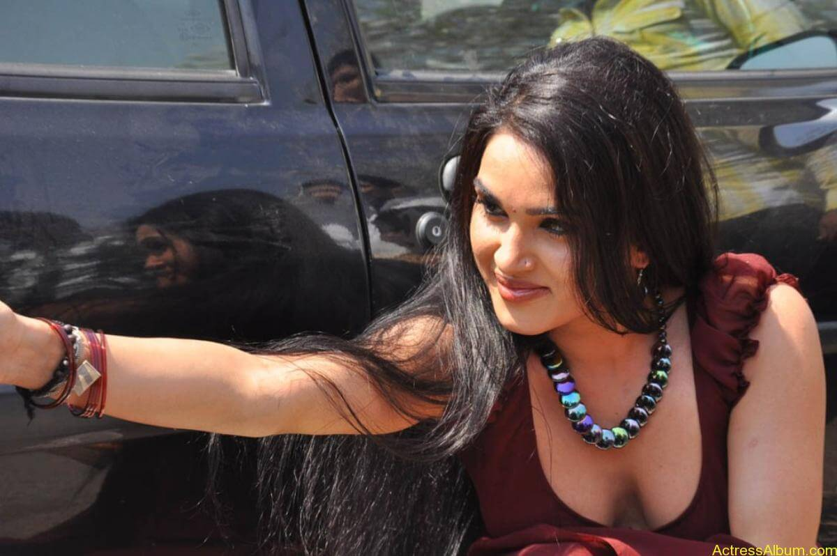 Kavya Singh Hot Saree Stills (2)