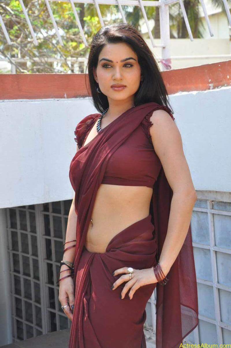 Kavya Singh Hot Saree Stills (21)