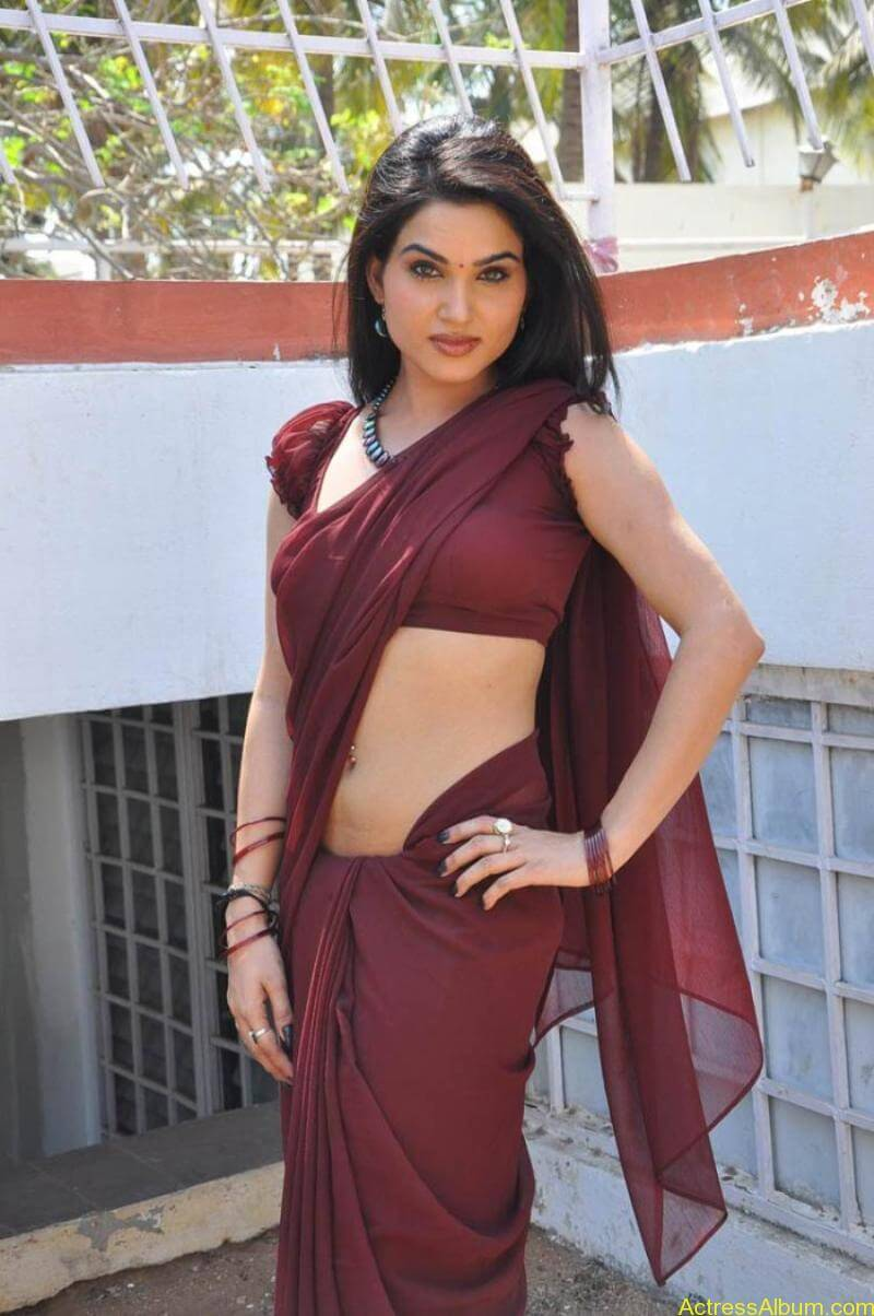 Kavya Singh Hot Saree Stills (22)