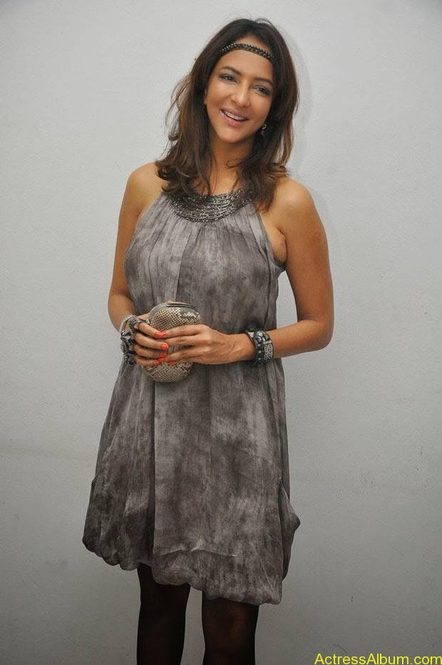 Manchu Lakshmi Latest Hot Photos (14)