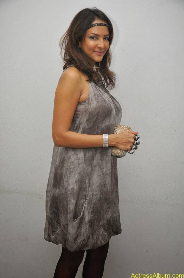 Manchu Lakshmi Latest Hot Photos (4)
