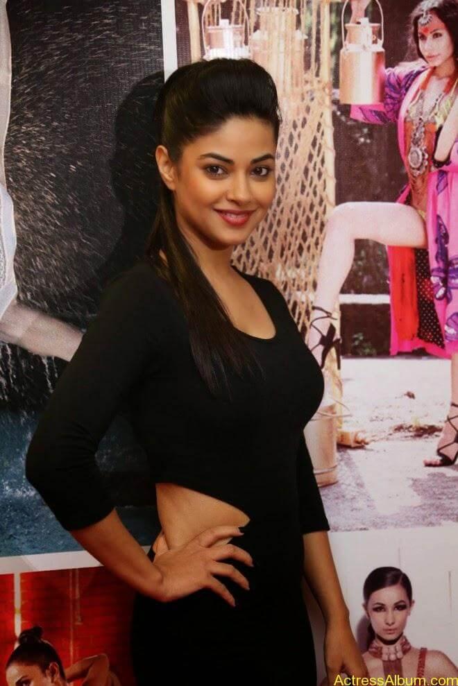 Meera chopra hot stills (3)