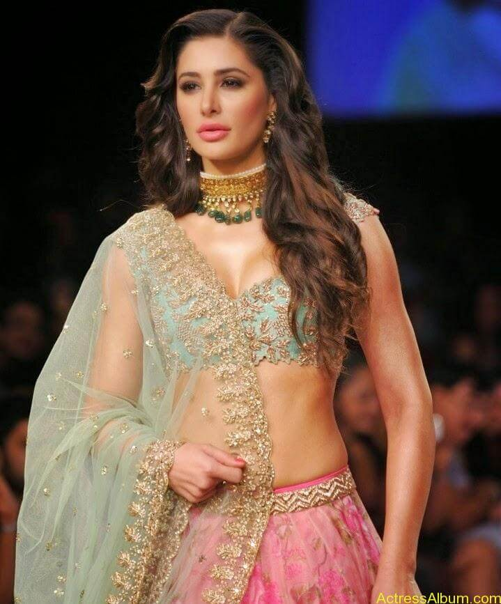 Nargis Fakhri hot in half saree  (1)