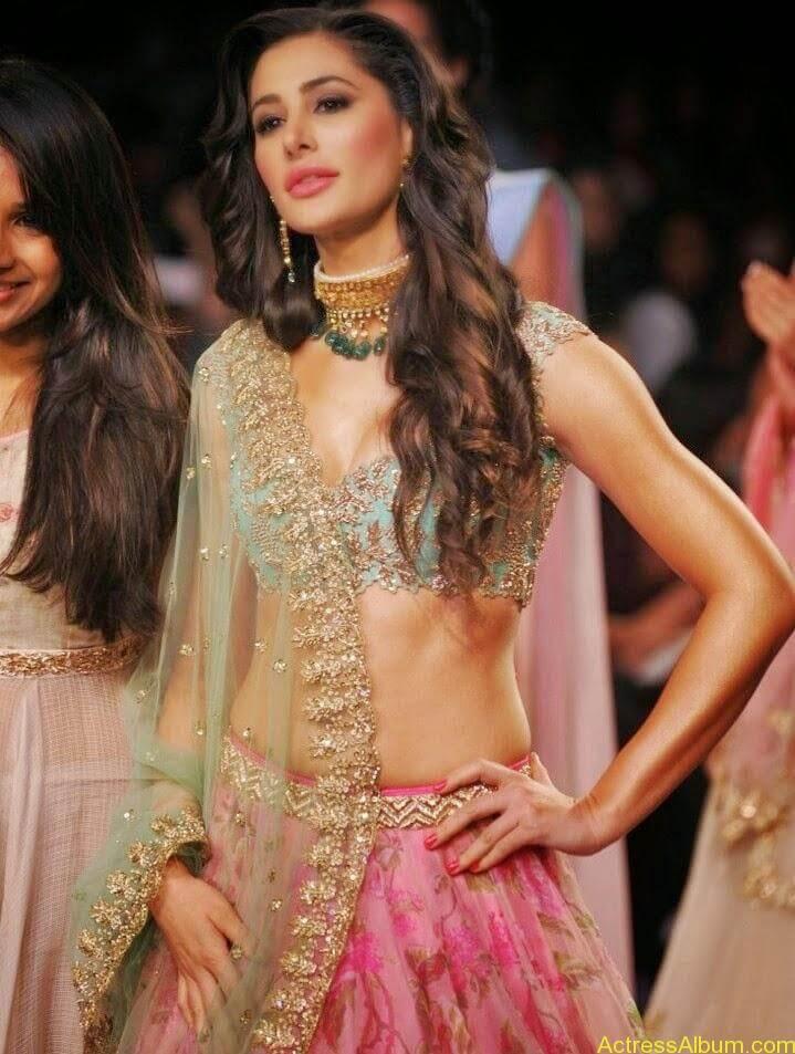 Nargis Fakhri hot in half saree  (2)