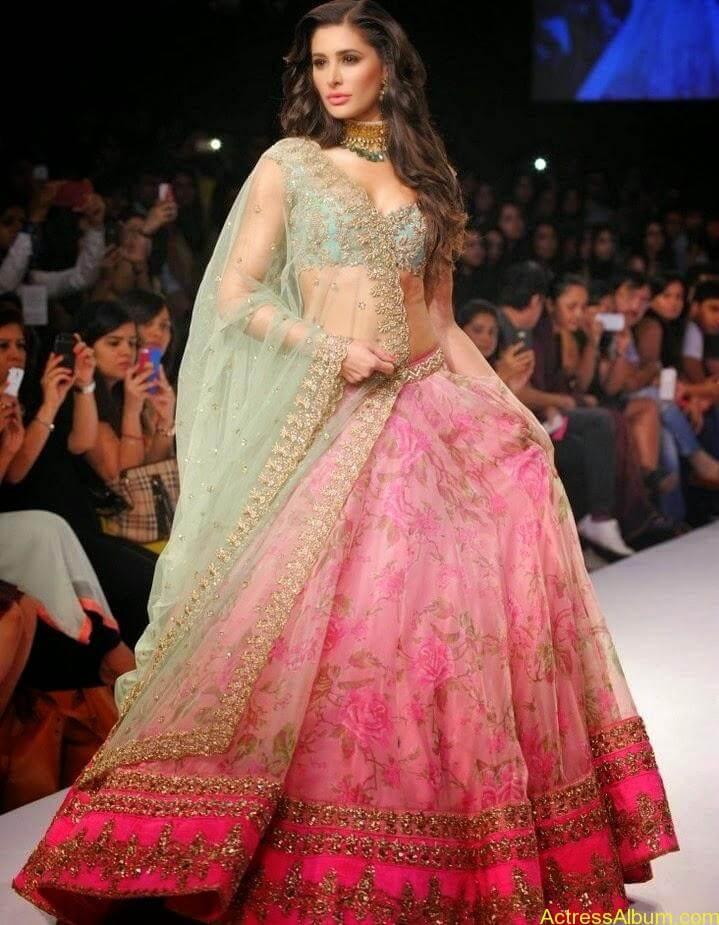 Nargis Fakhri hot in half saree  (3)