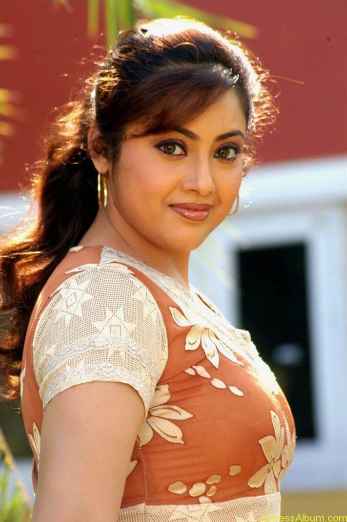 old actress Meena  hot photos (6)