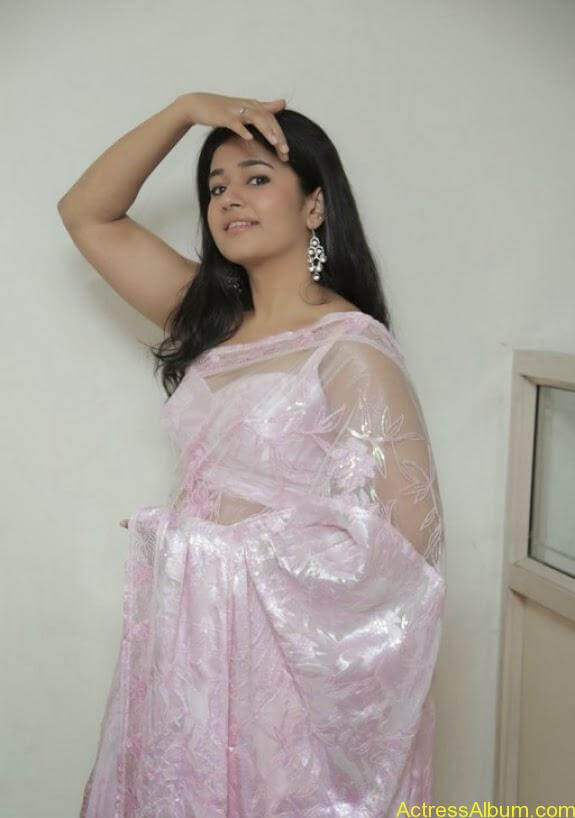 Poonam bajwa in transferentsaree photos (13)