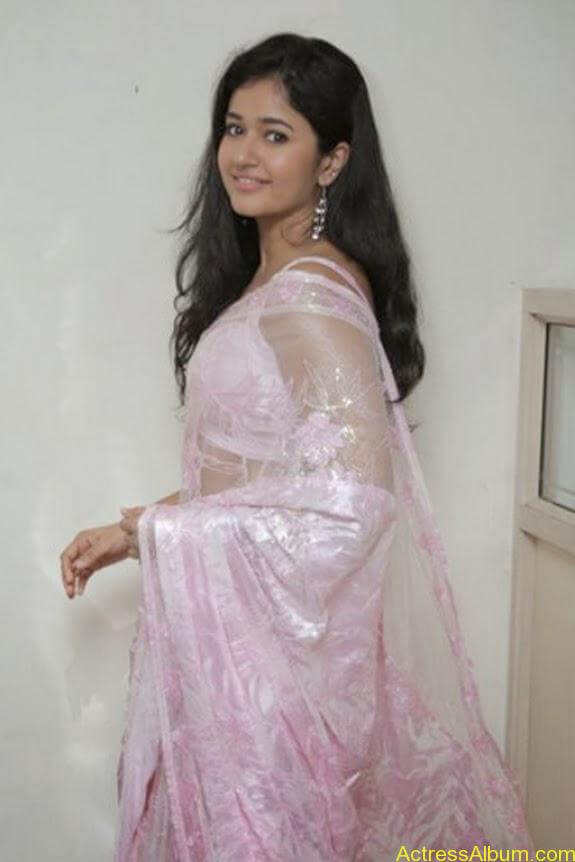 Poonam bajwa in transferentsaree photos (15)
