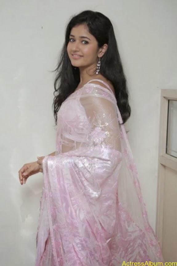 Poonam bajwa in transferentsaree photos (15)