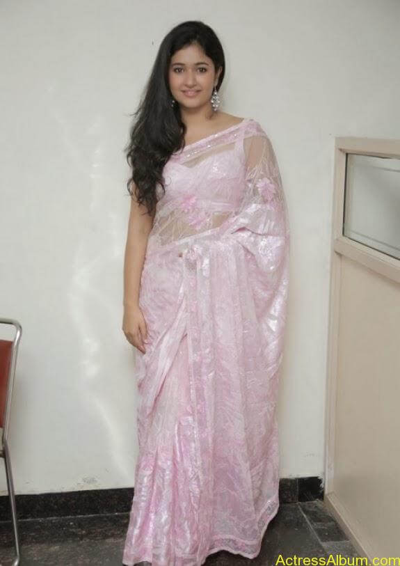 Poonam bajwa in transferentsaree photos (16)