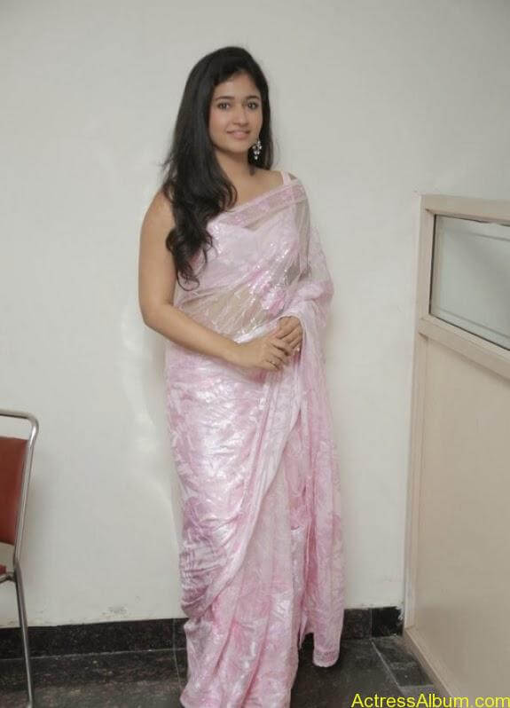 Poonam bajwa in transferentsaree photos (18)