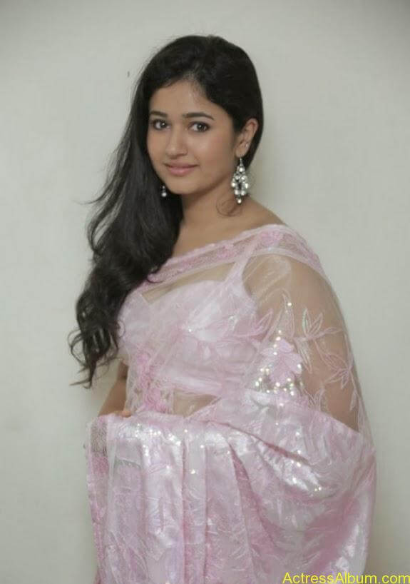 Poonam bajwa in transferentsaree photos (8)
