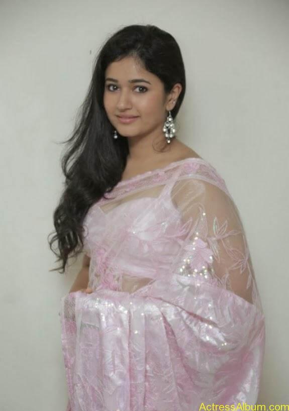 Poonam bajwa in transferentsaree photos (8)